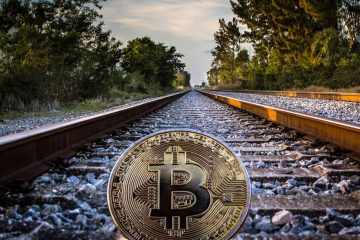 Investors Profit from Bitcoin Volatility with Algorithms