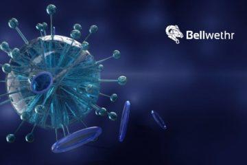 New Bellwethr Report Highlights the Devastating Impact Coronavirus is Already Having on US Small Businesses